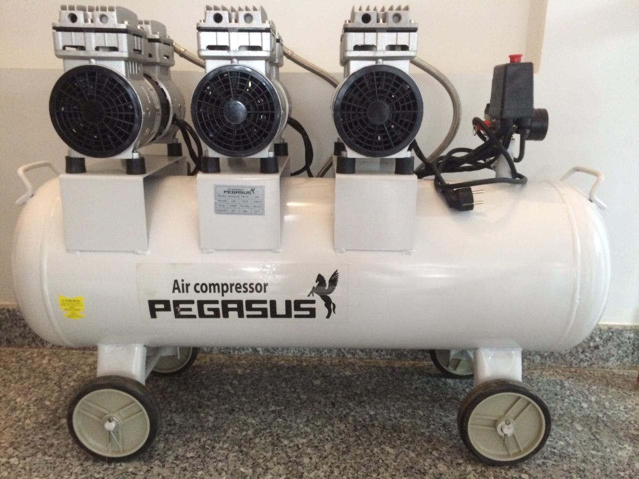 máy nén khí pegasus không dầu giảm âm