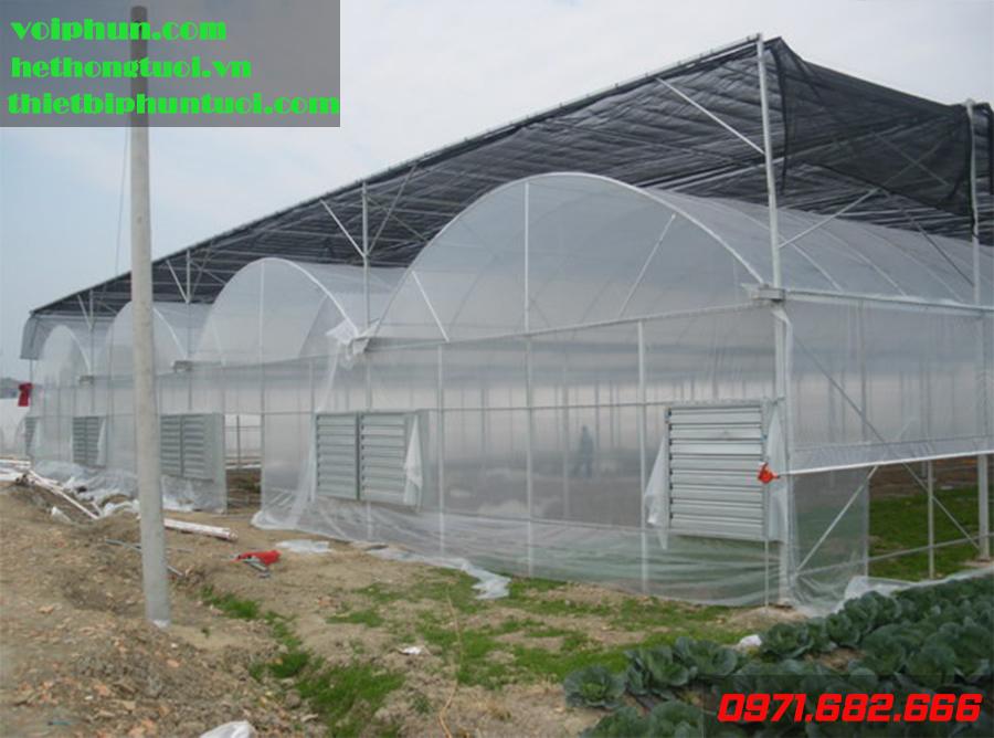 Thiết kế nhà kính nuôi tôm, nuôi tôm trong nhà bạt, nhà màng nuôi tôm, quy trình nuôi tôm trong nhà kính