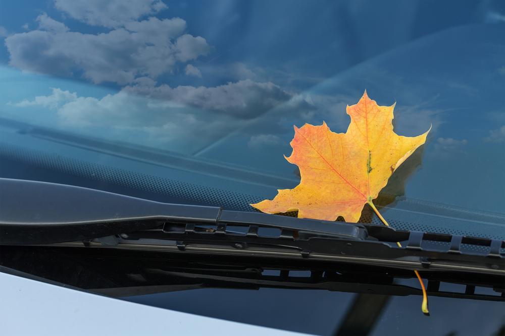 cần gạt nước ô tô khi nào cần thay mới