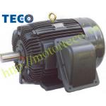 Động cơ TECO AEEL