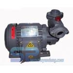 Máy bơm nước đẩy cao NTP HCP225-1.75 26 1HP