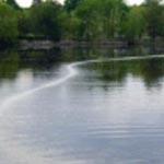 E-Rô-Týp (Ống Xốp) Thiết Bị Oxy Hoà Tan, Oxy Tầng Đáy Cho Ao Tôm, Ao Cá (D2