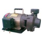 Máy bơm đồng ruộng NTP HVY250-1.75 26 1HP