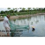lưới chắn cá