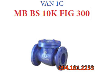 VAN 1C MB BS 10K FIG 300