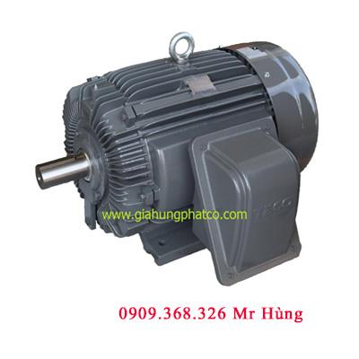 Động cơ Teco chân đế | Giá động cơ Mô tơ Teco | Báo giá motor 3 Pha 1 | Chân đế |