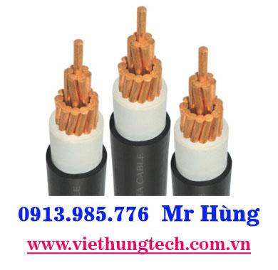 Cáp điện 1 lõi đồng CADIVI CXV300-61x2.52mm