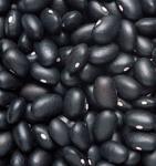Bán đậu nành hạt, đậu tương, đậu xanh,