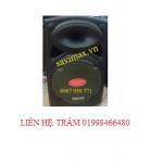 Máy trợ giảng công suất lớn Teimeisheng DP297