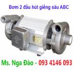 Bơm 2 đầu Tân Hoàn Cầu ABC-2200-3