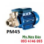 Bơm dân dụng Pentax PM 80