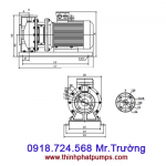 Bơm trục ngang TS50-32 SPCO