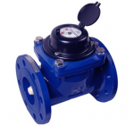 Đồng hồ nước Merlion DN65