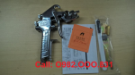 súng phun sơn Anest Iwata W-71-31G