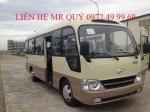 County Đồng Vàng đời 2016 giá tốt
