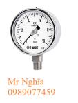 Đồng hồ đo áp suất Wise P252 – Wise Vietnam - TMP Vietnam