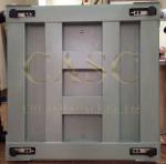 Cân sàn điện tử FS-THW Cân Chi Anh