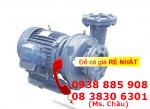 Bơm ly tâm dạng xoáy đầu gang NTP HVP250-12.2 26 (1HP)