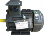 MOTOR TECO IE1