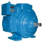 Blackmer pump LGLD 3F & LGLD 2E