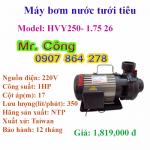 Bơm nước lưu lượng lớn NTP HVY250-1.75 26 1HP