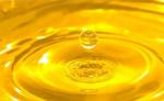 Dây chuyền tinh luyện dầu thực vật,dầu cá , dầu cám, biodiesel
