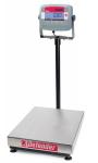 Cân bàn điện tử T31P OHAUS, cân bàn điện tử
