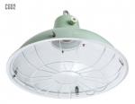 Đèn treo trần (Pedant, Cargo Light): CGD1, CGD2