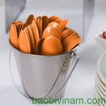 Chuyên cung cấp dao nhựa muỗng nhựa nĩa nhựa dùng một lần