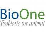 Men vi sinh xử lý đáy ao BioOne cao cấp