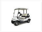 Xe golf điện 2 chỗ