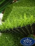 Cỏ nhân tạo sân vườn CNT13 cỏ đẹp giá tốt
