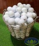 Khay đựng bóng golf inox - Golffami