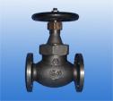 FCD globe  valves