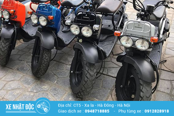 Honda Zoomer 50cc – Xe ngầu cho những tay chơi cá tính