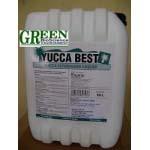 NK&PP Yucca Nguyên liệu (yucca bột, nước) chiết xuất từ Yucca Schidigera dùng Sản xuất thuốc thủy sản, Khử khí độc trong Nuôi trồng thủy sản