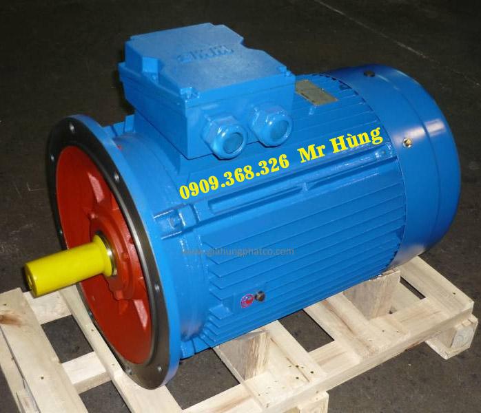 Động cơ Elektrim - B5 | Động cơ bơm chân đế