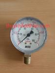 đồng hồ khí F63-10kg
