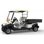 Xe golf điện chở hàng