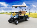 Xe điện sân golf 2 chỗ BLT