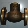 bronze check valves